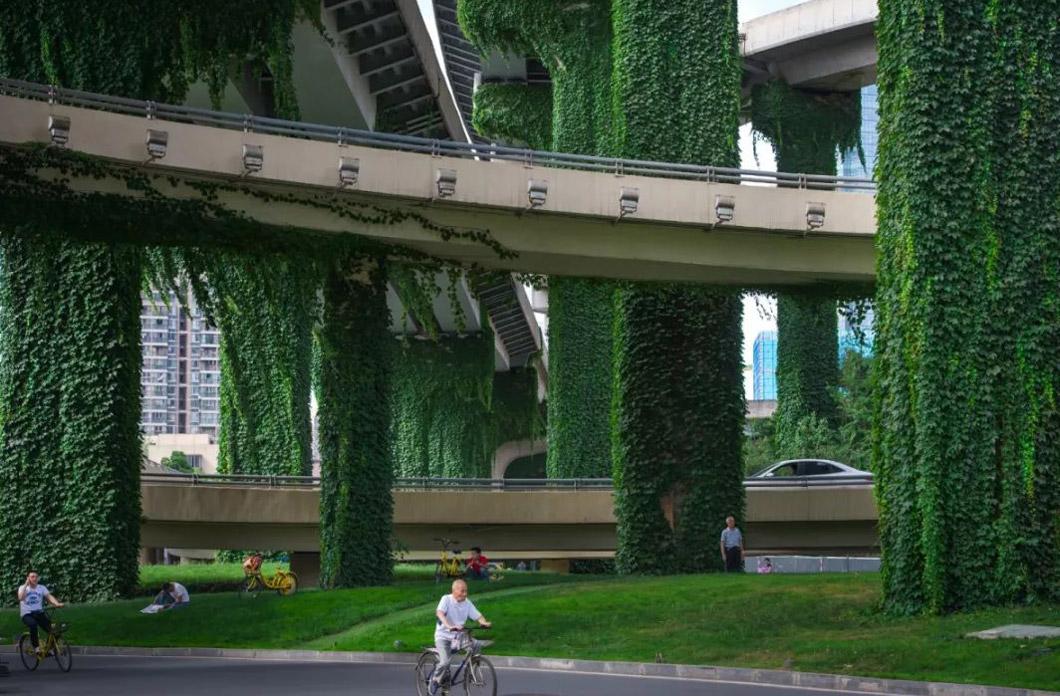 城市道路景观设计2