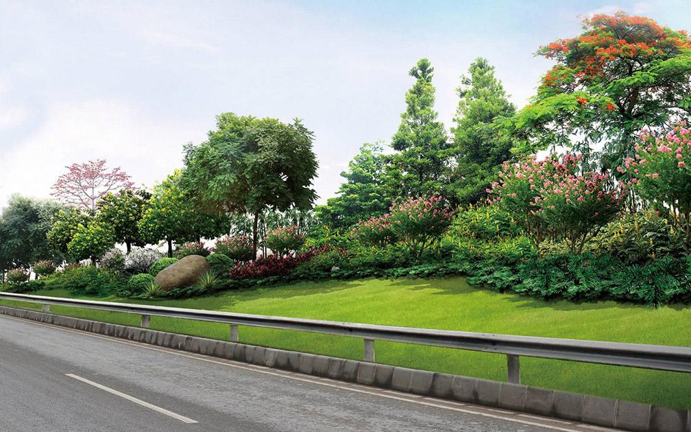 城市道路景观设计图片