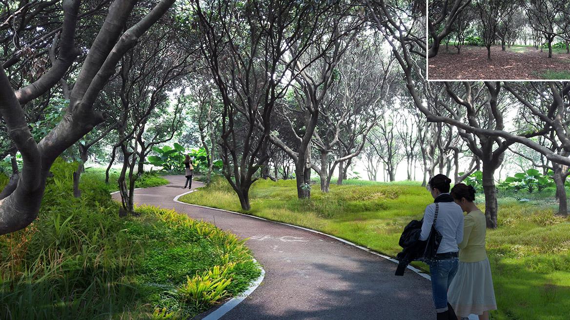 大岭山镇新塘村美丽幸福村居建设行动计划图11