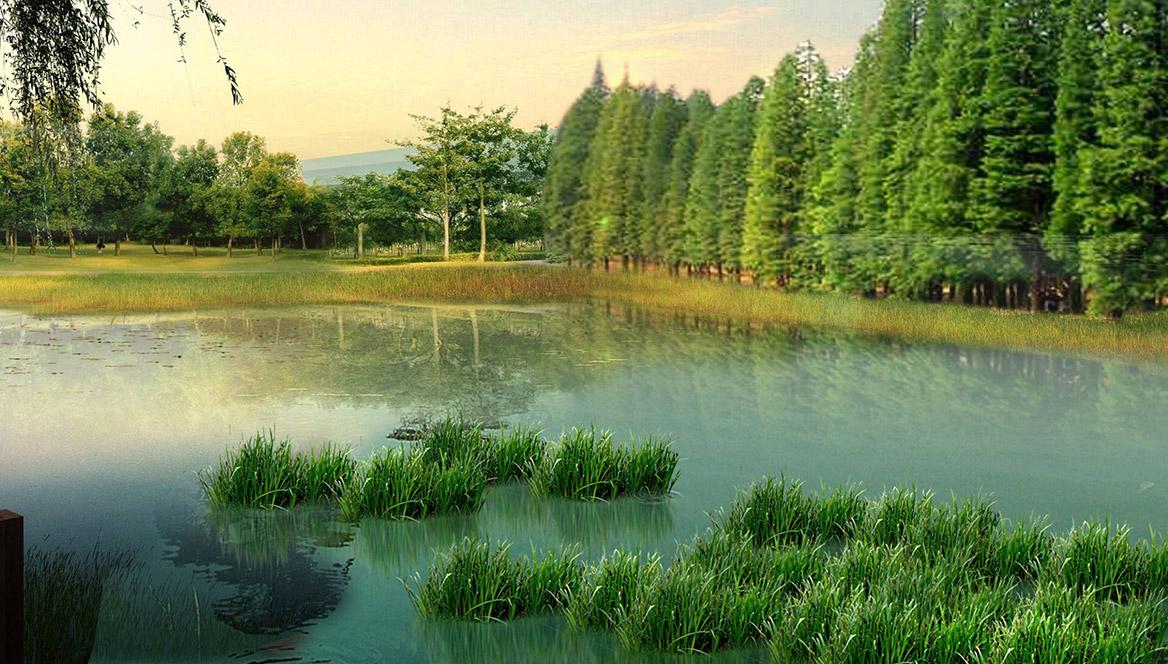 洪梅站前绿化公园景观设计图片11