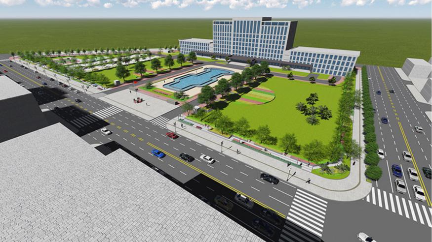 道滘政府广场绿化改造