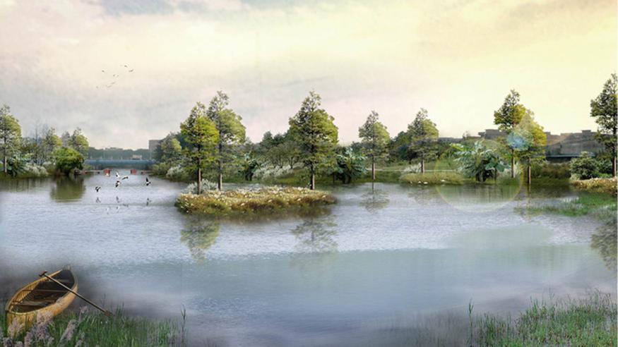 洪梅镇梅沙村湿地公园整体规划设计水生湿地效果图