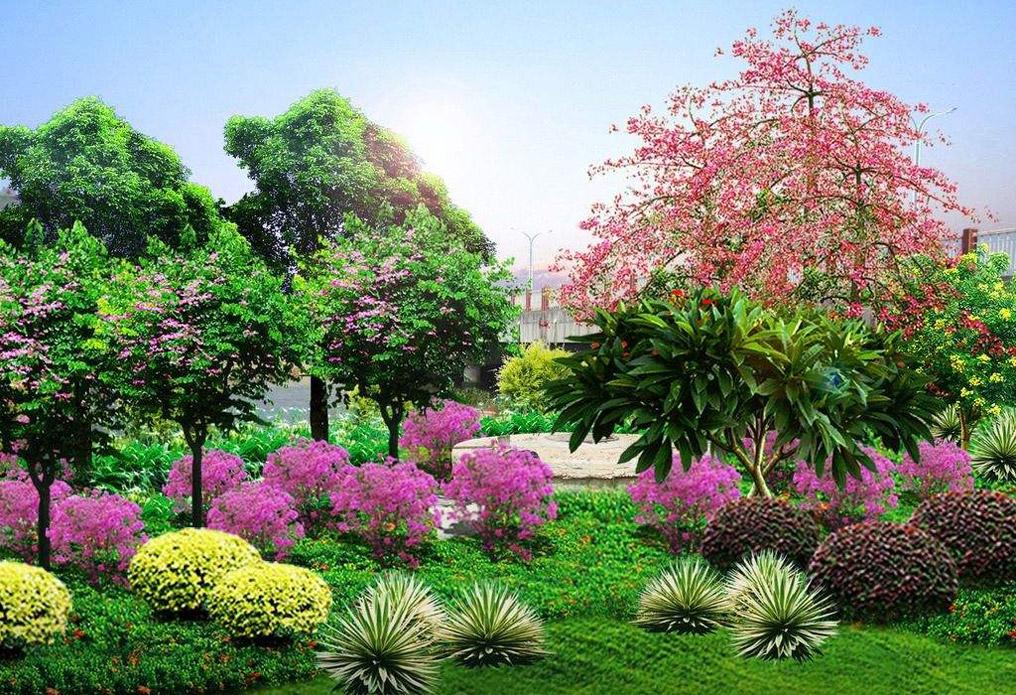 景观设计图片